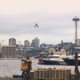 New buoys mark flight path on Lake Union