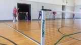Pickleball gaining popularity with West Michigan seniors