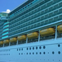 Over 200 passengers fall sick on Royal Caribbean Cruise