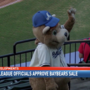 Minor league officials approve Mobile Bay Bears sale