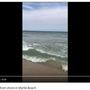 Blacktip Shark spotted off Myrtle Beach State Park beach