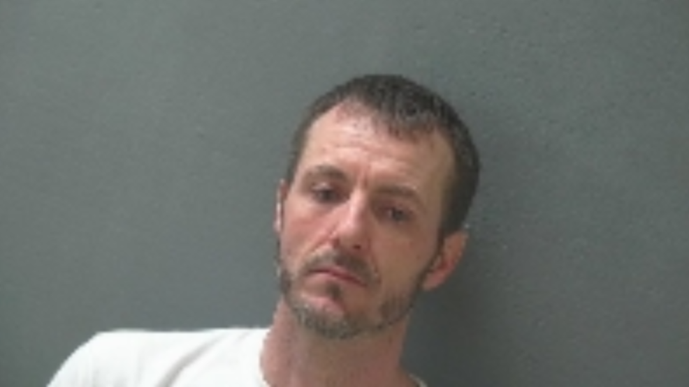 Gobles homicide suspect charged with murder during arraignment