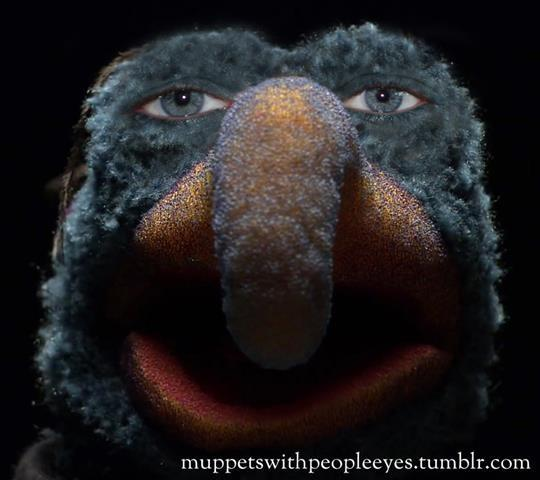 photo: http://muppetswithpeopleeyes.tumblr.com/