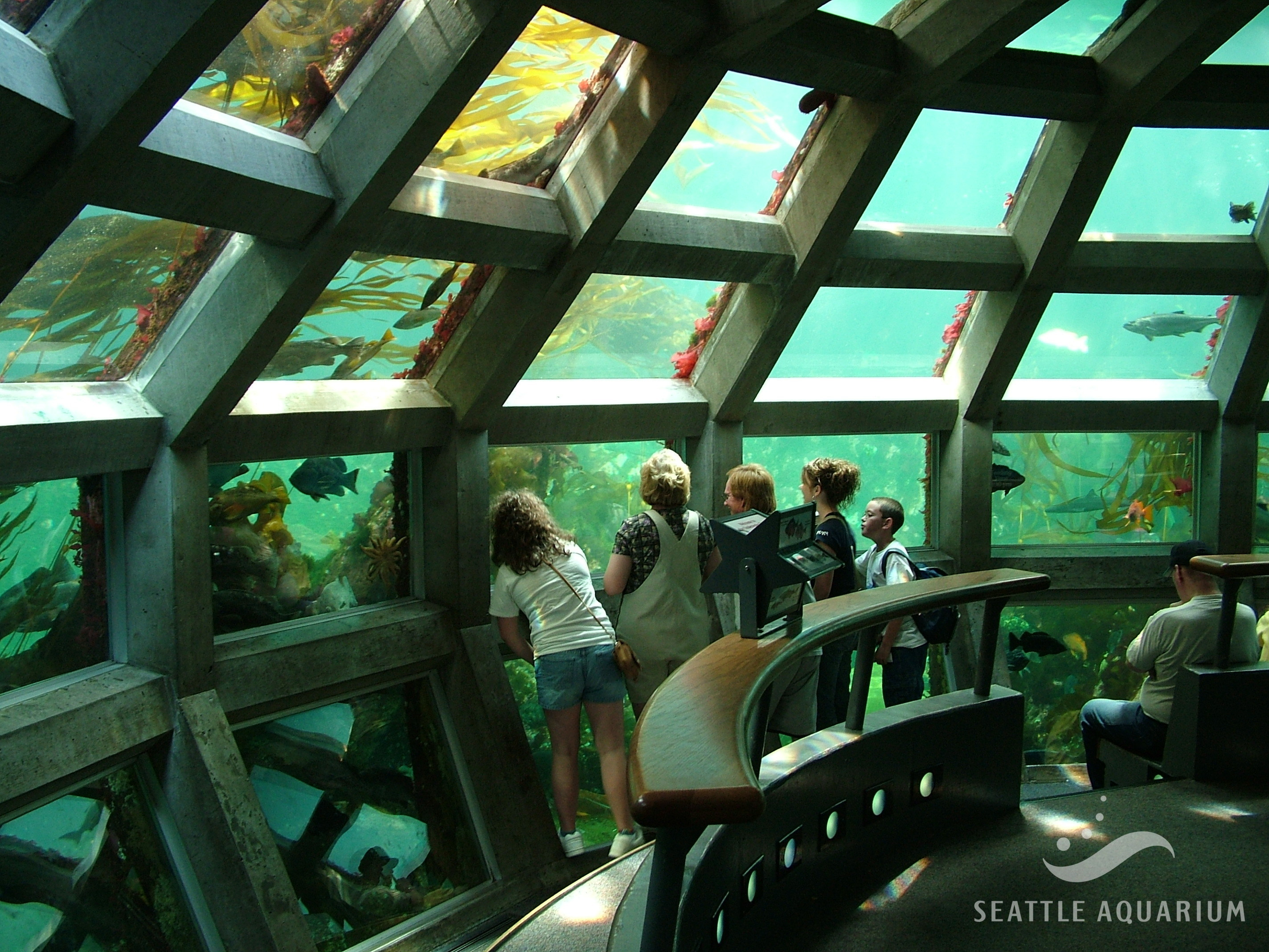 Seattle Aquarium's Underwater Dome exhibit. (Photo courtesy of Seattle Aquarium)