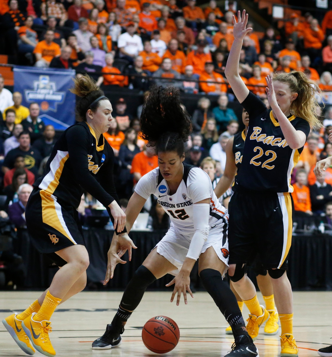 Oregon State's Kolbie Orum (12) goes after a loose ball with Long Beach State's Gigi Hascheff, left, and Madison Montgomery (22) during the first half of a first-round game in the women's NCAA college basketball tournament Friday, March 17, 2017, in Corvallis, Ore. (AP Photo/Timothy J. Gonzalez)
