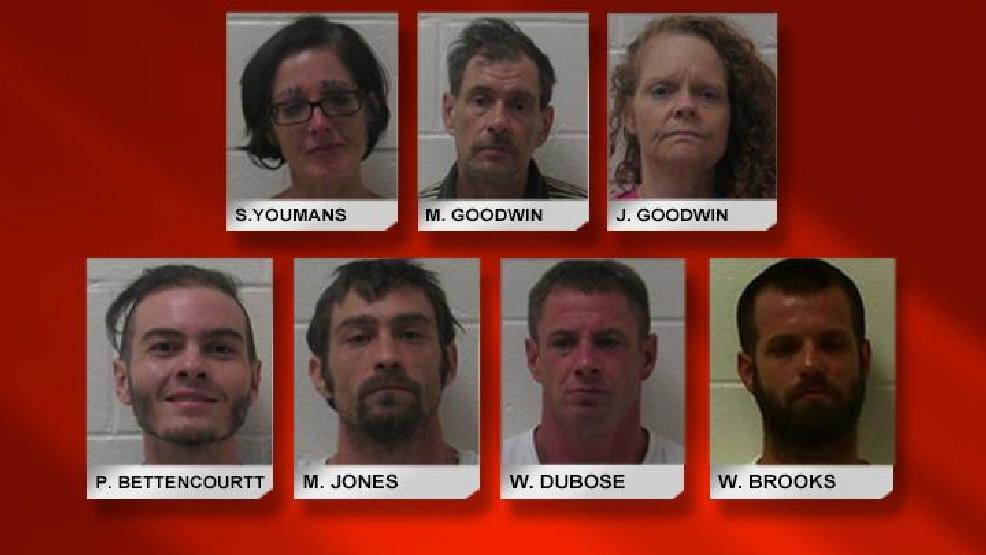 Jones County drug busts yield seven arrests | WGXA
