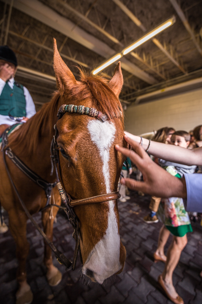 Attendees meet one of the racehorses at Keeneland.{ }/ Image courtesy of Catherine Viox // Published:{ }4.12.19