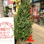 Christmas tree lot remains a Newport mainstay despite longtime owner's death