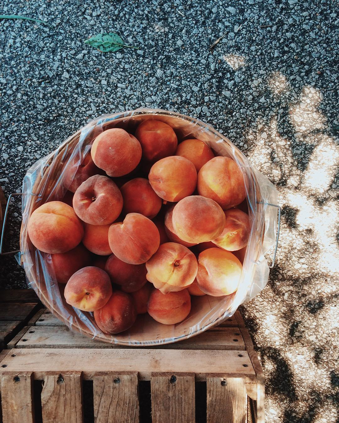 IMAGE: IG user @emilieabischoff / POST: Perfection is a full peck of peaches