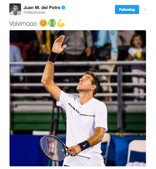 "Juan Martín del Potro posts a photo on Twitter and captions ""Volvimooo"" which means to ""to come back, retun"""