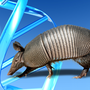 More armadillos move into Tennessee as temperatures rise