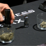 Hundreds attend Reno Cannabis Convention