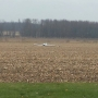 Plane lands unexpectedly in Elkhart County field