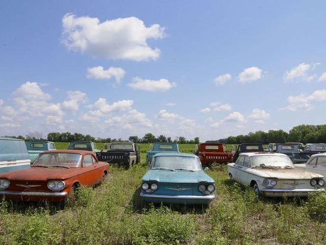 "Rare Corvairs and pickup trucks are lined up in a field. ""To find this many new, old vehicles is unheard of,"" says auctioneer Yvette VanDerBrink. ""It's like a white buffalo."""