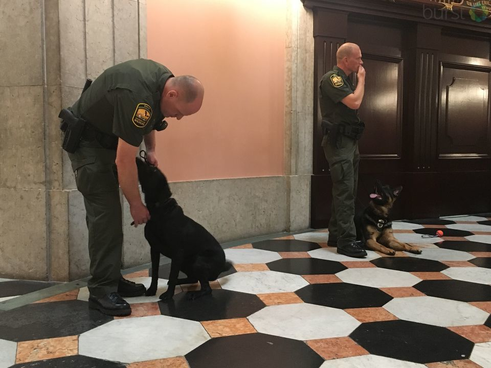 <p>The Ohio Department of Natural Resources unveiled its newest graduates from the Division of Wildlife training program at the Ohio Statehouse. (WSYX/WTTE)</p>