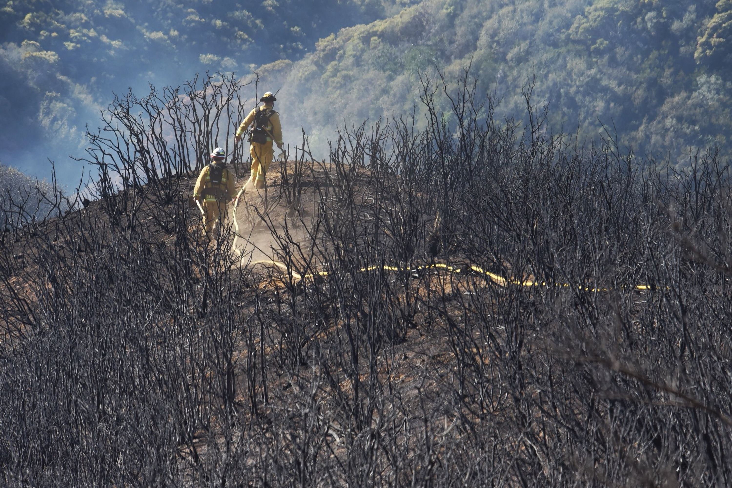 In this photo provided by the Santa Barbara County Fire Department, firefighters follow a hose line while walking rugged and scorched terrain below E. Camino Cielo near Gibraltar Road in Santa Barbara, Calif., Tuesday, Dec. 19, 2017. Officials estimate that the fire will grow to become the biggest in California history before full containment, expected by Jan. 7. (Mike Eliason/Santa Barbara County Fire Department via AP)