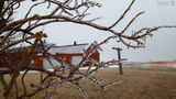 Winter Storm Brooks leaving icy coating on Northeast Wisconsin