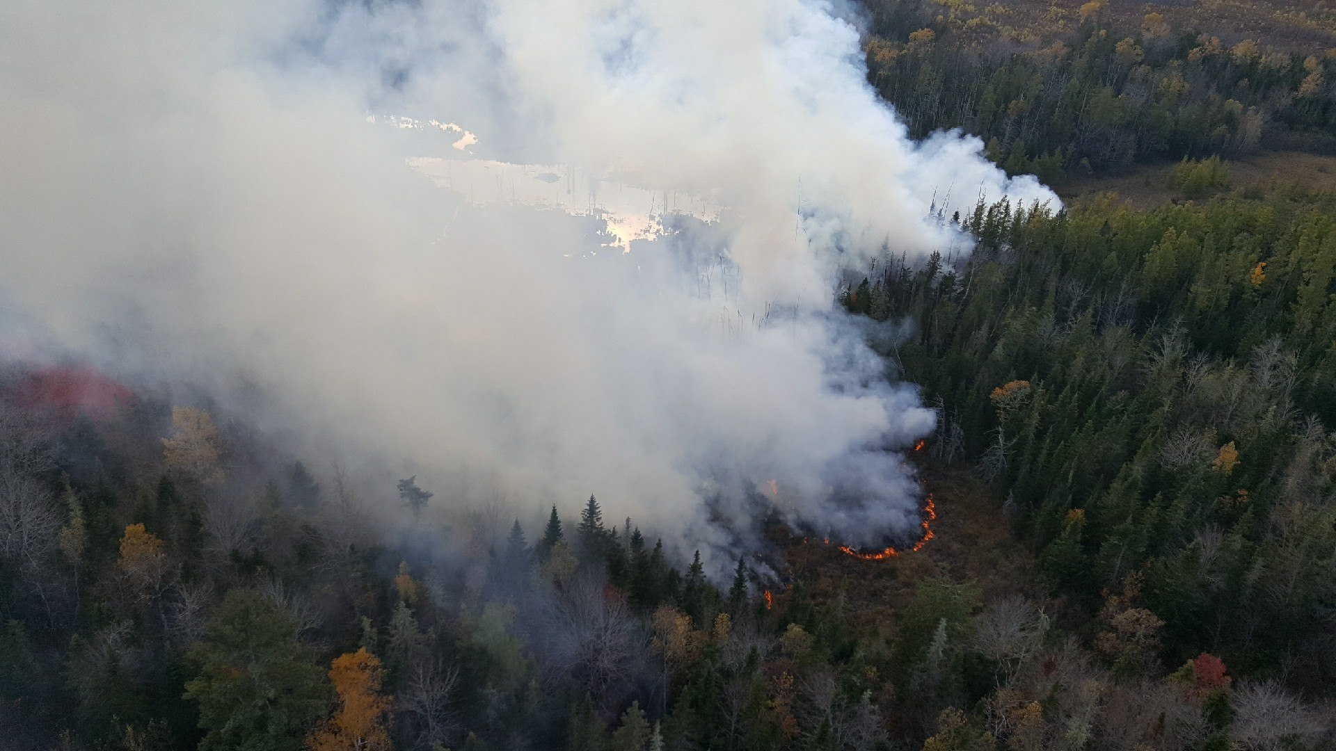 Wildfire in Hancock County (courtesy of Maine Forest Rangers)<p></p>