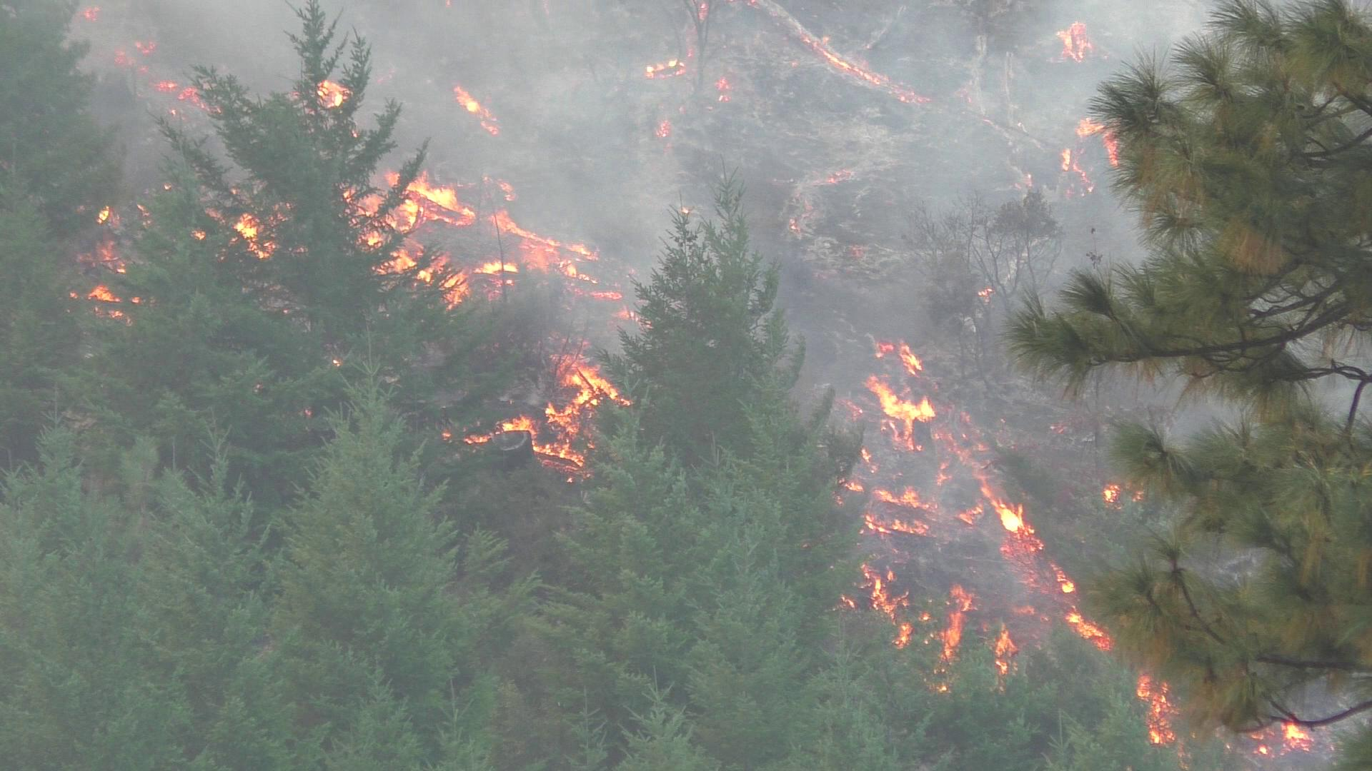 The Horse Prairie Fire on August 30, 2017. (Still from DFPA video)