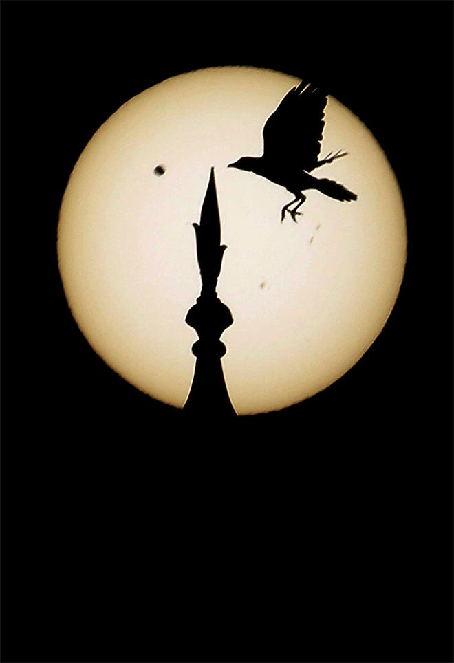 A bird comes in to land atop one of the domes of the landmark Taj Mahal as Venus, top left, begins to pass in front of the sun, as visible from Agra, India, Wednesday, June 6, 2012. People around the world turned their attention to the daytime sky on Tuesday and early Wednesday in Asia to make sure they caught the rare sight of the transit of Venus. (AP Photo/Kevin Frayer)