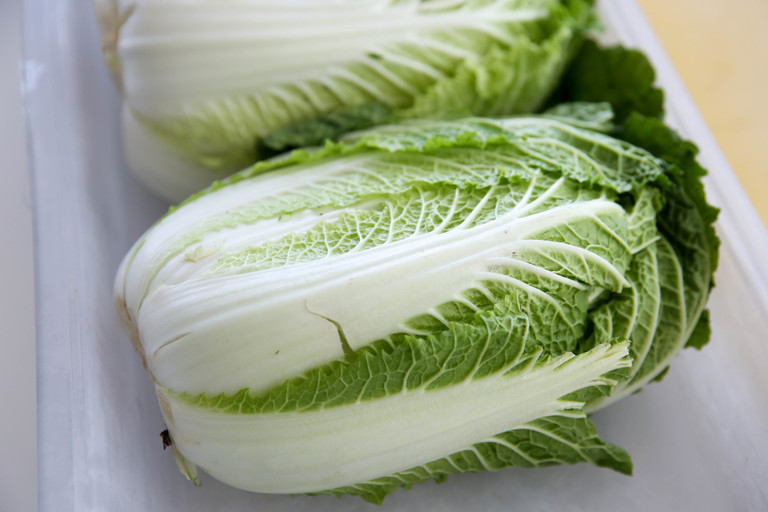 To make kimchi, start with a head of Napa cabbage. (Image: Amanda Andrade-Rhoades/ DC Refined)