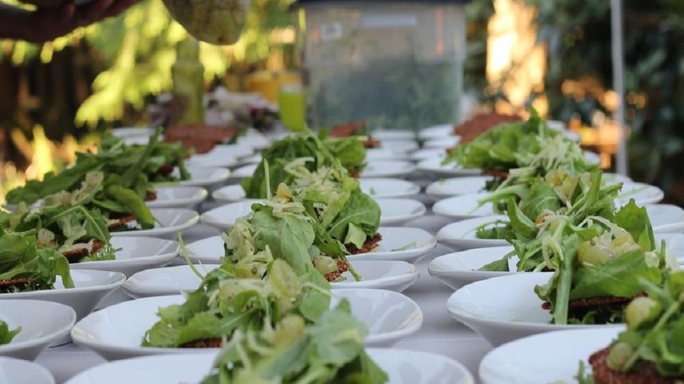 5 Of Seattle S Best Vegetarian Restaurants