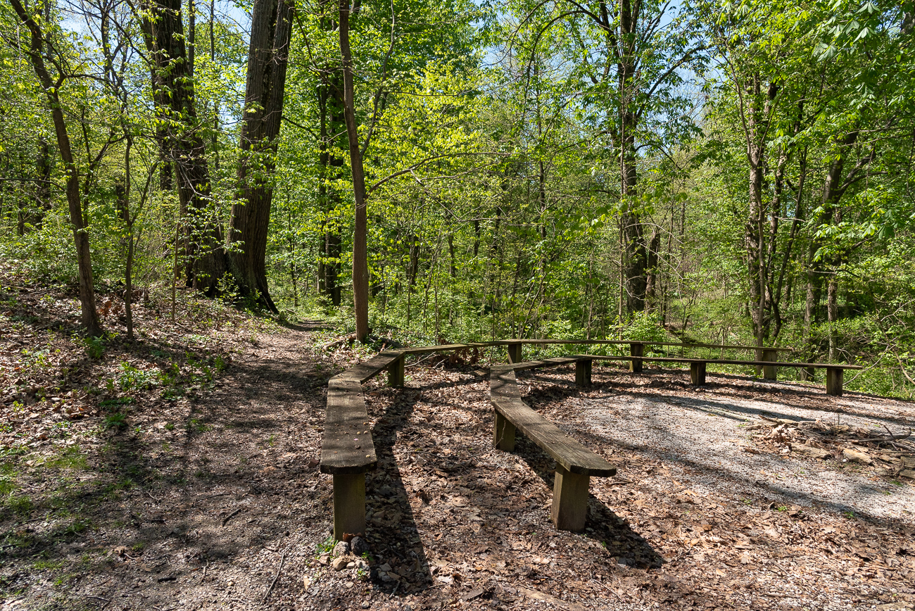 Areas with stadium-style wooden seating are found throughout the trails. / Image: Phil Armstrong, Cincinnati Refined // Published: 4.25.19