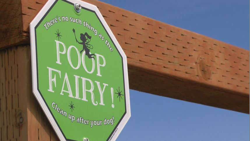 Ironic signs at Candy Mountain are grabbing dog owners' attention