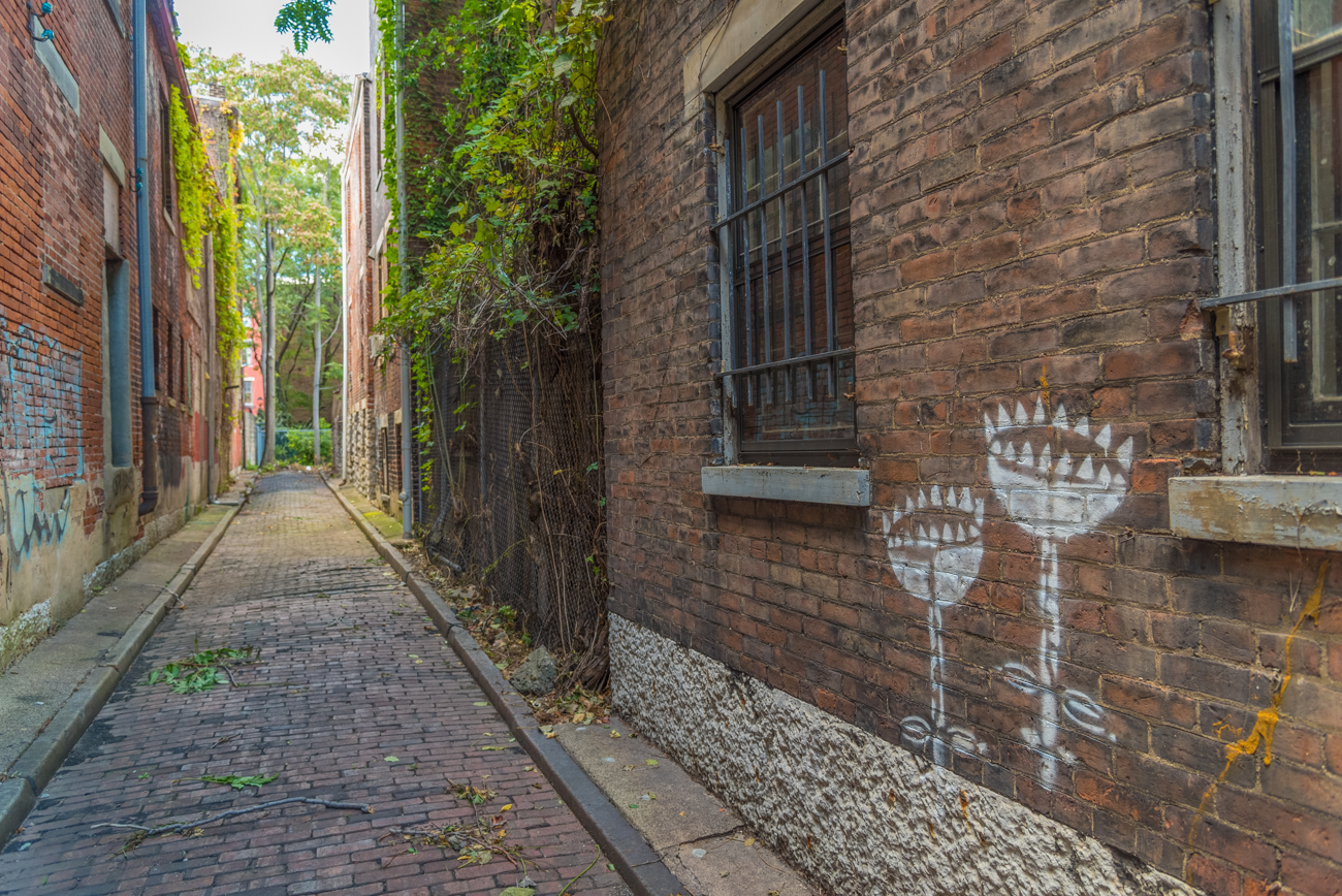 NAME: Coral Alley / CONNECTS: 13th Street to back of Iris Book Cafe / NEIGHBORHOOD: OTR / Image: Phil Armstrong, Cincinnati Refined