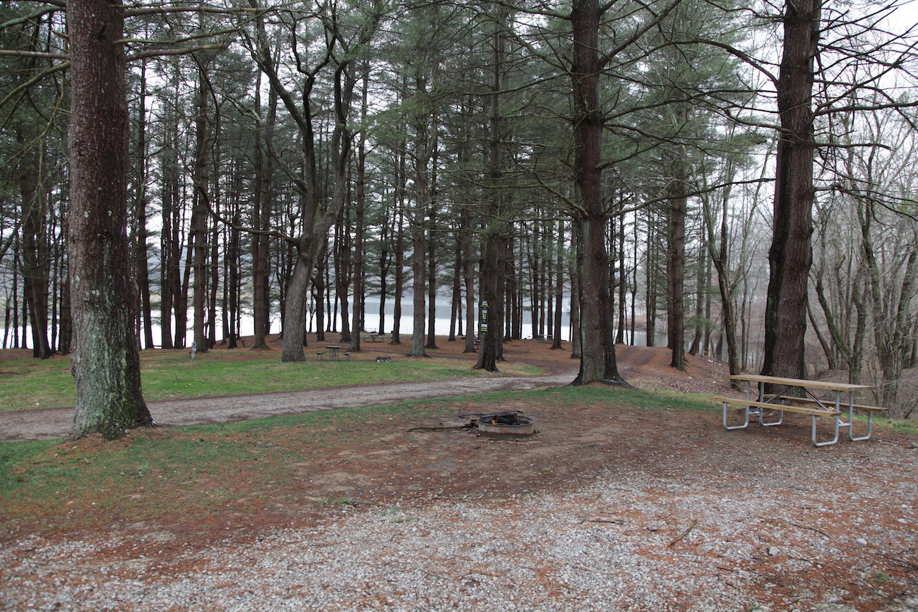 The view from the deck of Juniper looks through the campground to Lake Logan. Both Juniper and Trillium will be moved in the spring of 2021 to their own lots, which will also overlook the lake. / Image: Chez Chesak{ }// Published: 1.24.21