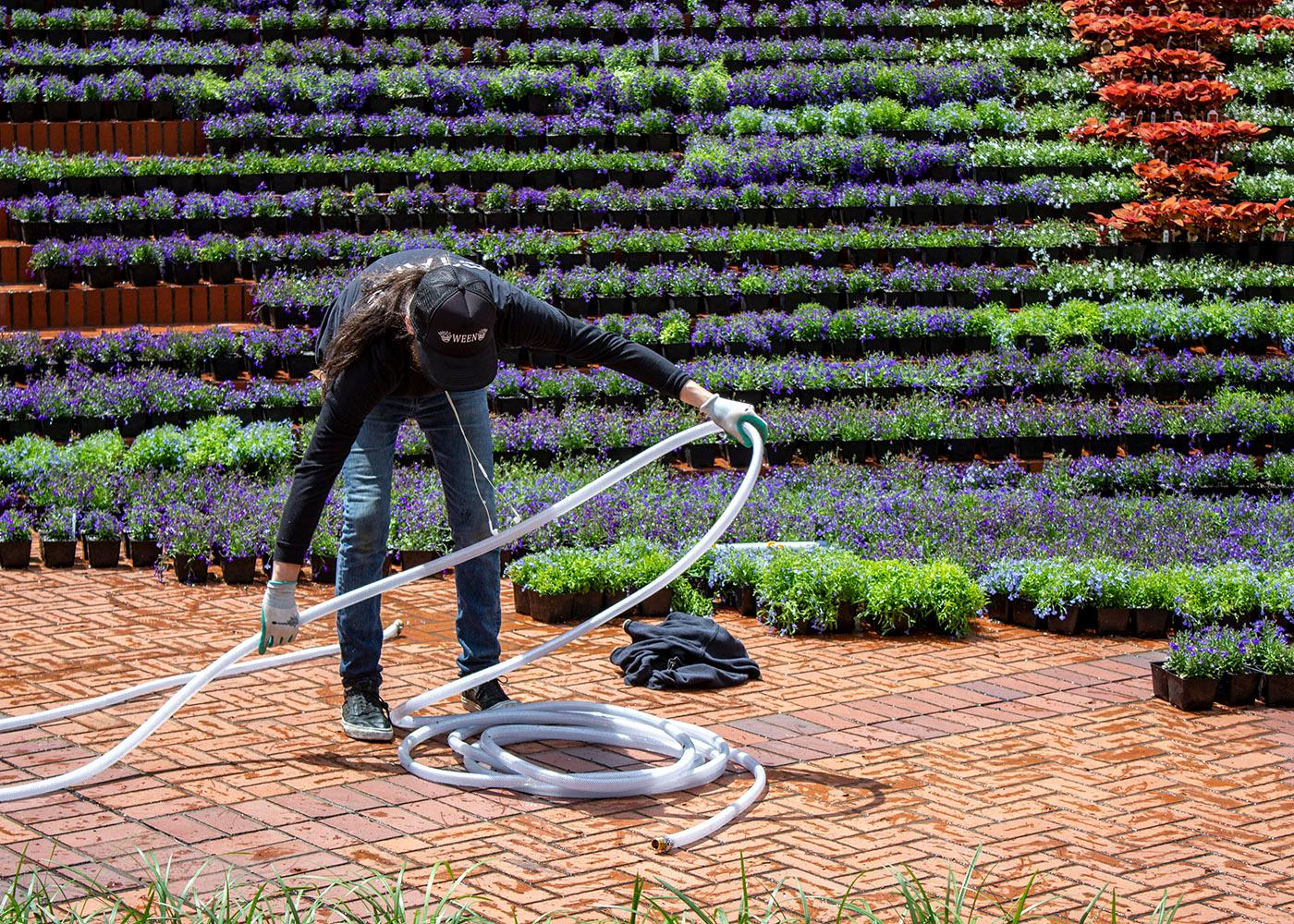 The 2018 Festival of Flowers began in Pioneer Courthouse Square in Downtown Portland on Friday, June 1. This year's display was designed by Walker Macy and is called oFISHially GORGEous. It's meant to bring elements of the Columbia River Gorge into the city and encourage visitors to become immersed in the landscape. The Festival of Flowers will be on display through June 12. The material used in the design will be available to the public in the annual flower sale June 13 – 15. Photo by Amanda Butt