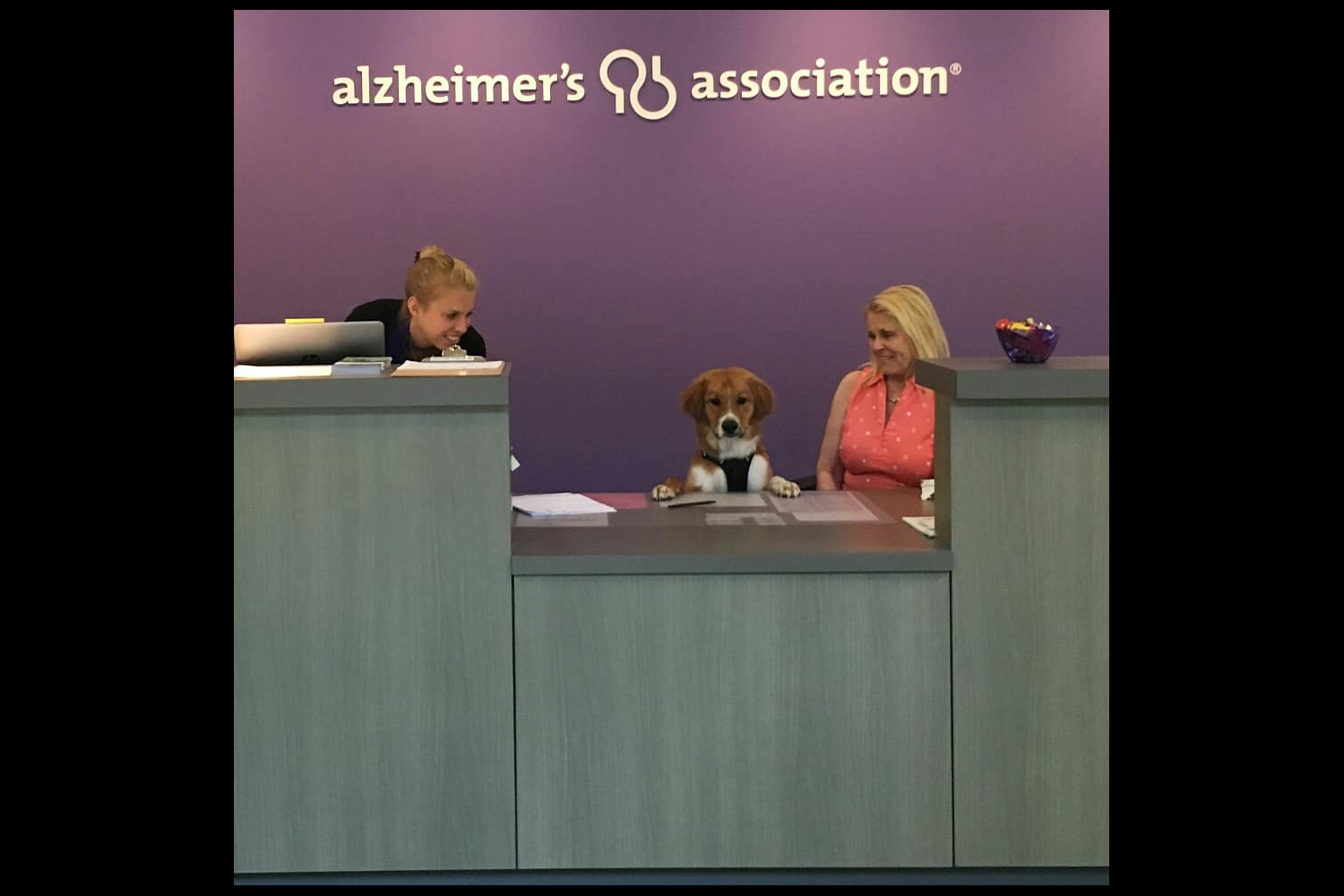 Darrel at work at the Alzheimers Association{ }(Image: Hailey Adair)