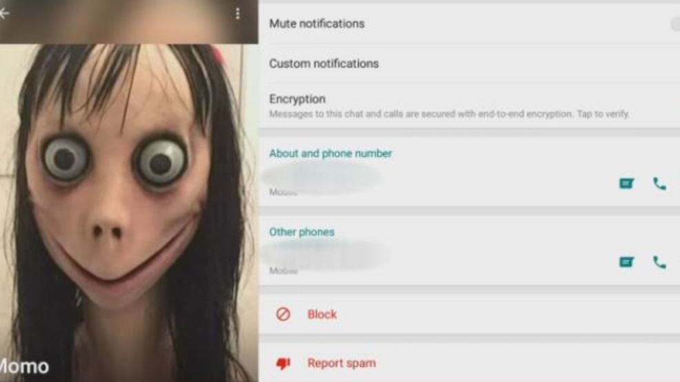 abc 15 investigates what is the momo challenge wpde