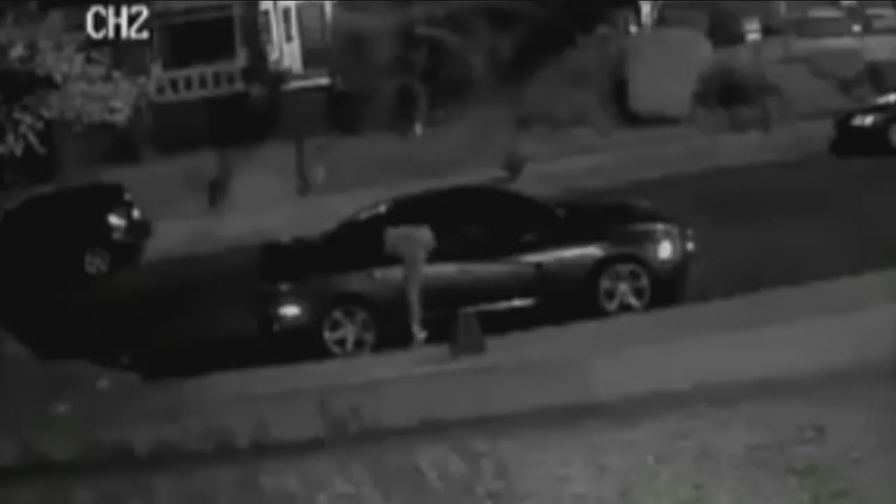 Nearly four dozen cars broken into or damaged in NW DC community (Surveillance Footage Screenshot)