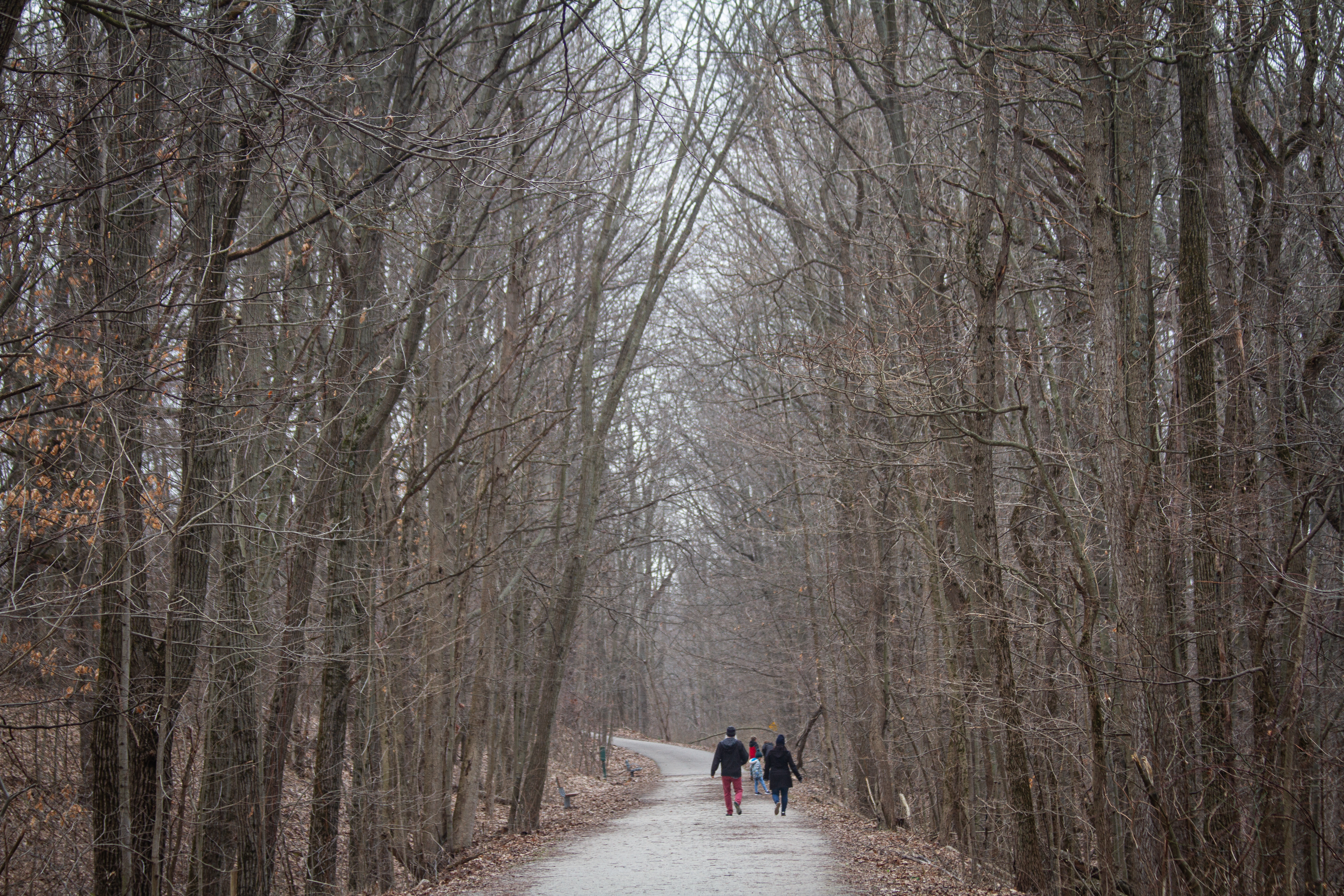 The Hillman Family takes a walk on the Kal-Haven trail at Kal-Haven State Park on Wednesday, March 25.{ }(WWMT/Sarah White)
