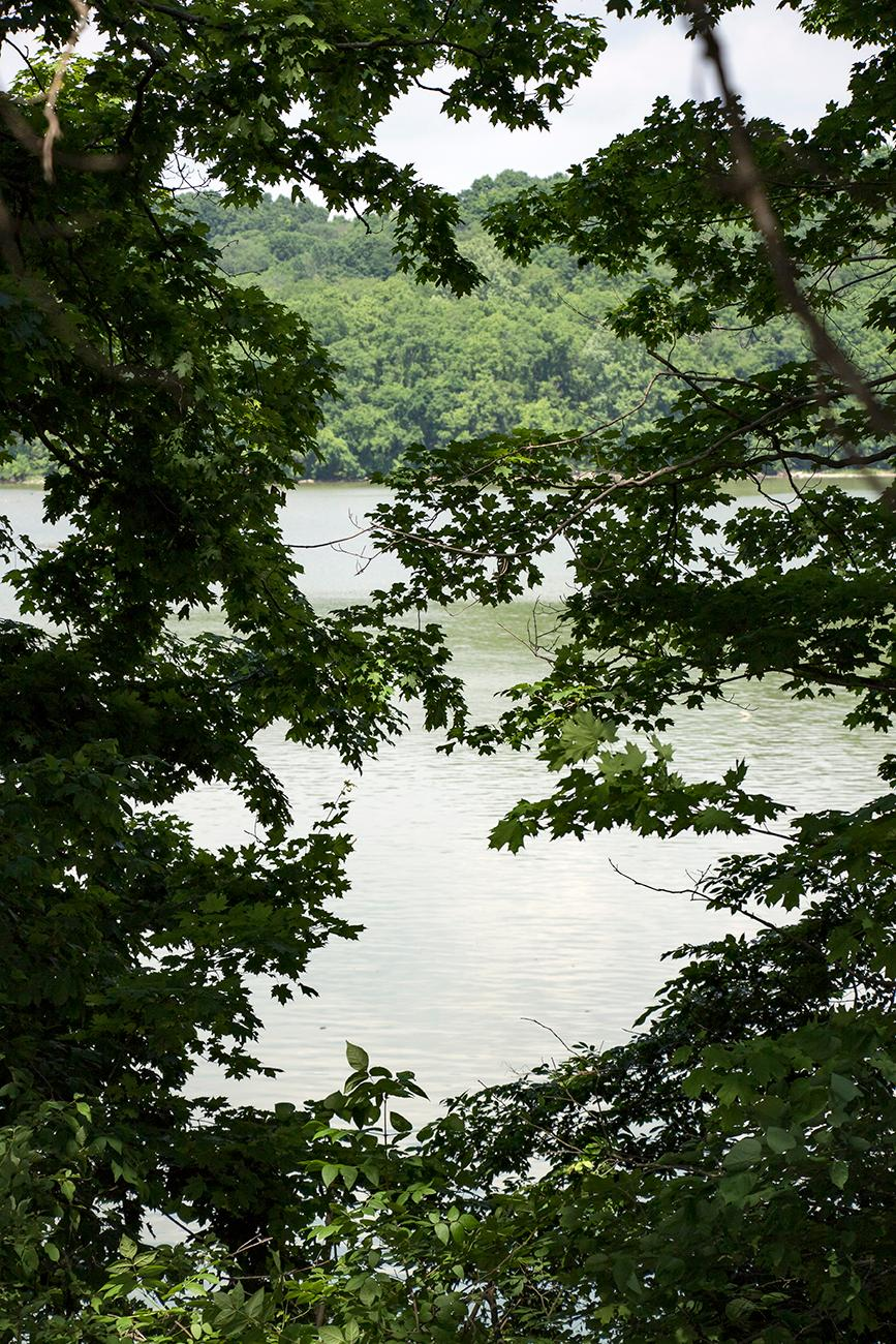 "Brookville Lake is about an hour west of Downtown Cincinnati. The lake sits on 16,445 acres and offers over 25 miles of hiking. Glidewell Trail features a 2,000-year-old Native American mound and offers two hiking paths: 4.5-mile ""long loop"" and 2-mile ""short loop."" Brookville Lake also features boating, fishing, campsites, and beaches for additional outdoor fun. / Image: Allison McAdams // Published: 6.30.18"