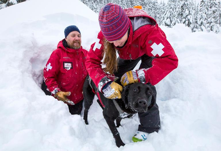In 1993, Stevens Pass created the Avalanche Rescue Dogs program to aid in their rescue efforts for victims of avalanches and other emergencies. It takes about three years for a young pup to be ready to start saving lives. Each dog goes through a four phase training program, each phase a little more difficult than the last. Stevens Pass currently has seven dogs in operation, and have trained over 20 in the program's history. Stevens Pass Avalanche Rescue Dogs is also a member of the Back Country Avalanche Rescue K-9 (BARK) group, a statewide, non-profit, volunteer based mountain rescue organization of professional ski patrollers and avalanche rescue dogs. To support this wonderful program, there is the 4th annual Paws and Pints Benevolent Night at Icicle Brewing in Leavenworth, WA from 6-10pm on Tuesday, February 6, 2018. There will be a silent auction, raffle, this season's t-shirt for sale, and live music! Meet the Stevens Pass Avalanche Rescue Dogs and handlers from 6-7pm! (Sy Bean / Seattle Refined)<p></p>