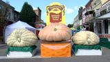 Barnesville Pumpkin Festival officially kicks off