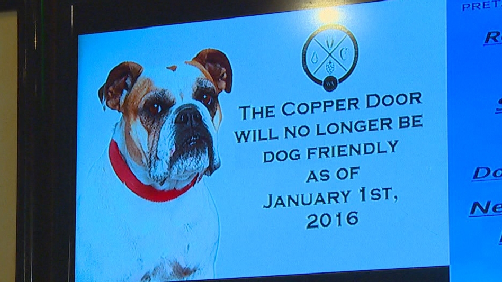 Ruff For Dog Owners Pierce County Clamps Down On Pets In Bars Komo