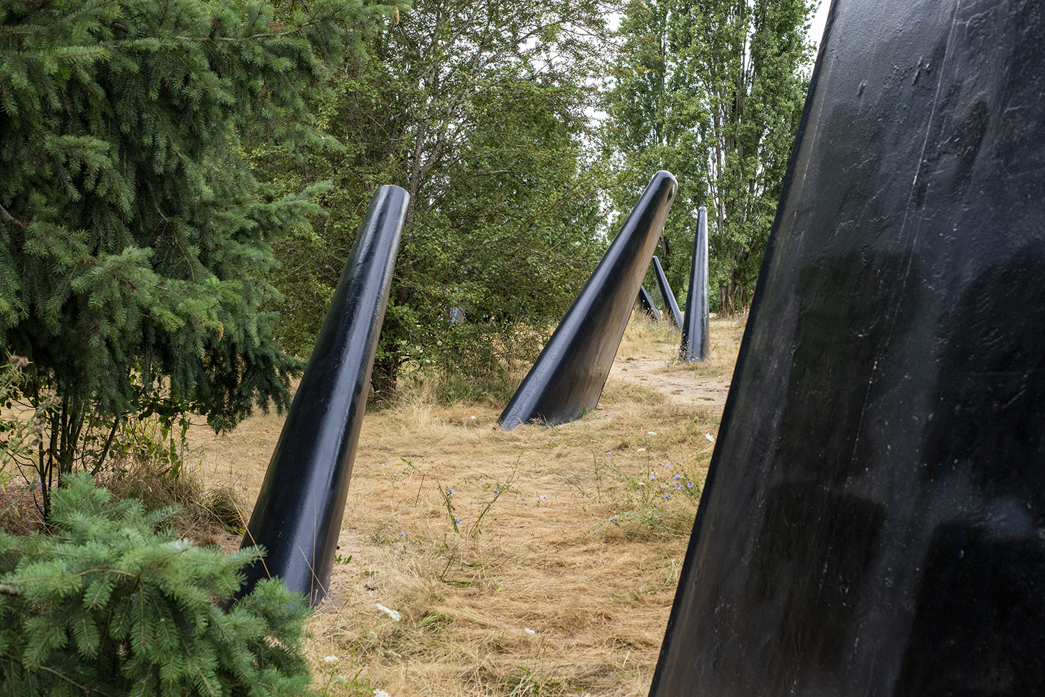 "Like something from a Hollywood movie, ""The Fin Project"" mimics a pod of Orcas gathering just beside Lake Washington. Created by sculpture John T. Young, the public art installation uses decommissioned Navy submarine wings, which can be seen up close in Magnuson Park. (Image: Rachael Jones / Seattle Refined)<p></p>"