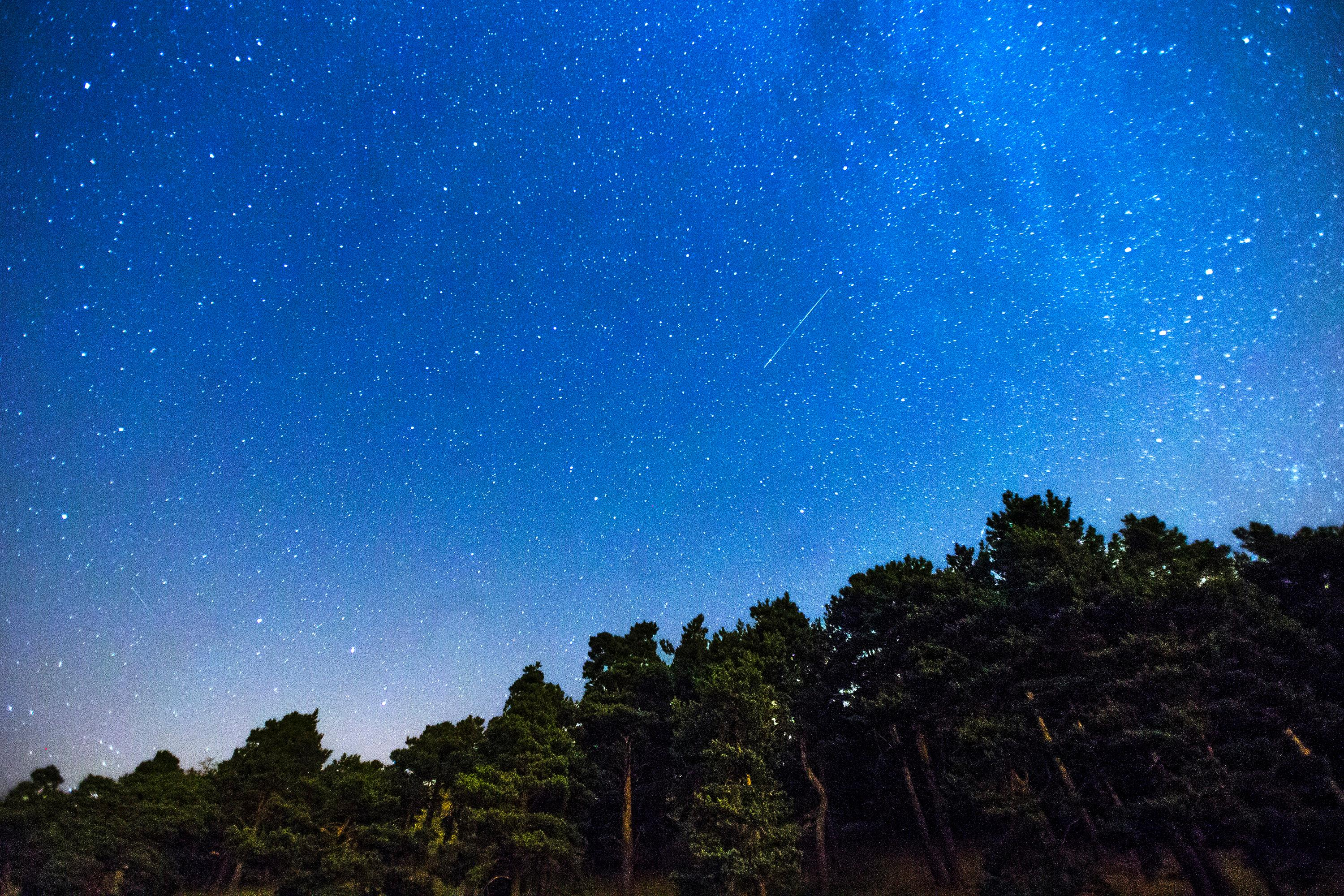 FILE – In this July 28, 2014, file photo, two meteors, center and lower left, during the annual Perseid meteor shower streak across the sky above a forest on the outskirts of Madrid. The AP reported on Aug. 4, 2017, that the peak of the annual Perseid meteor shower on Aug. 11 and 12 won't come close to setting any records. The head of NASA's meteoroid environment office, Bill Cooke, tells AP that astronomers project a slightly higher than normal shower rate with 150 meteors per hour across the Northern Hemisphere, but the brightness of the moon will wash out the finer Perseids. (AP Photo/Andres Kudacki, File)