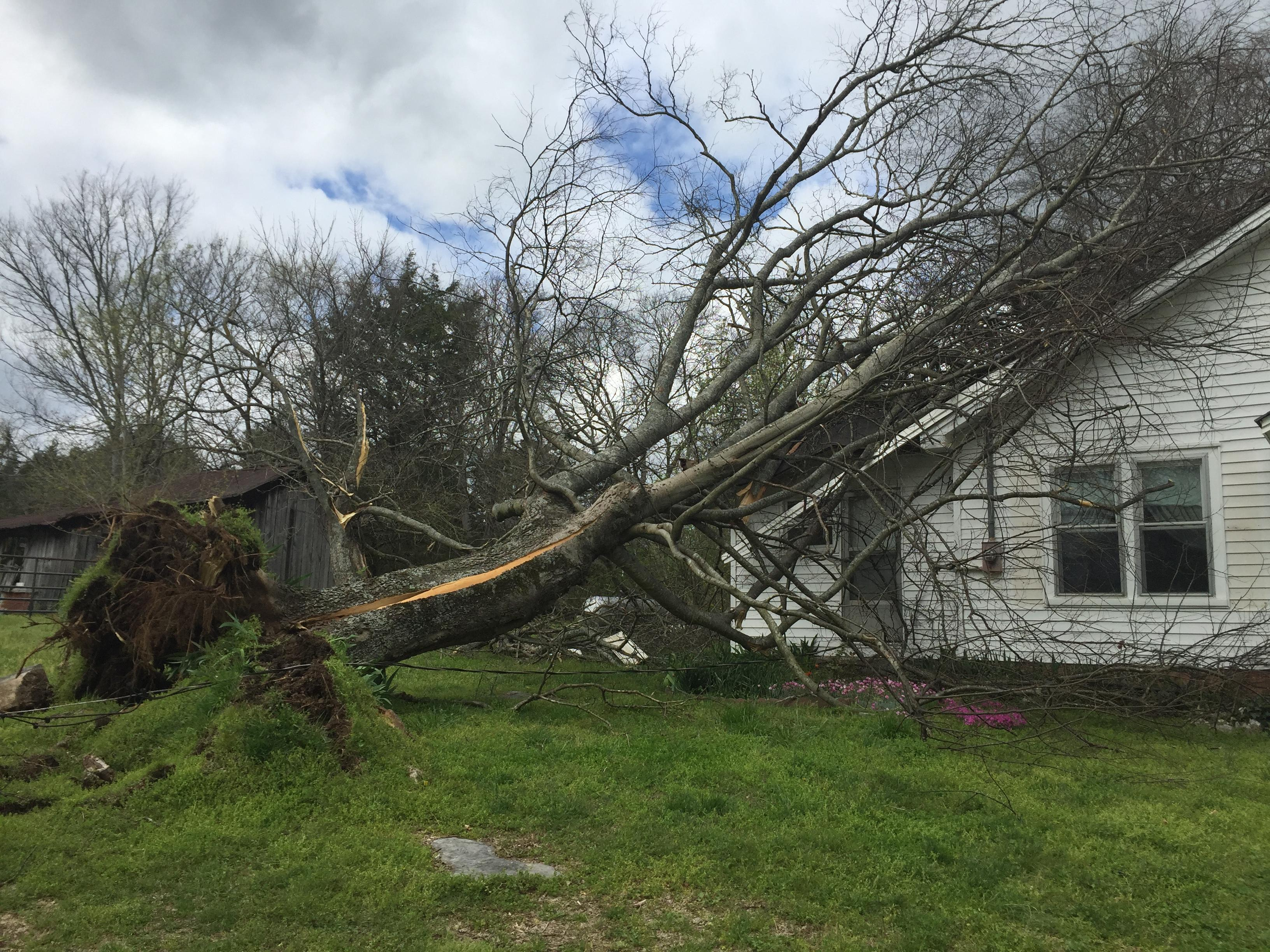 Damage to a home in Shelbyville PHOTO: WZTV