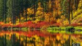 Photos: Northwest shows off its incredible autumn splendor