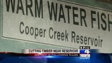 Forestry Dept.: Cutting near Cooper Creek Reservoir 'follows the rules'